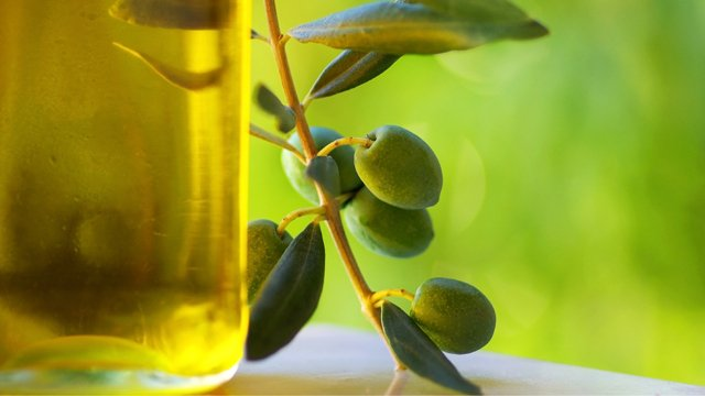 Olive Oli Greece best Pelion Extra Virgin